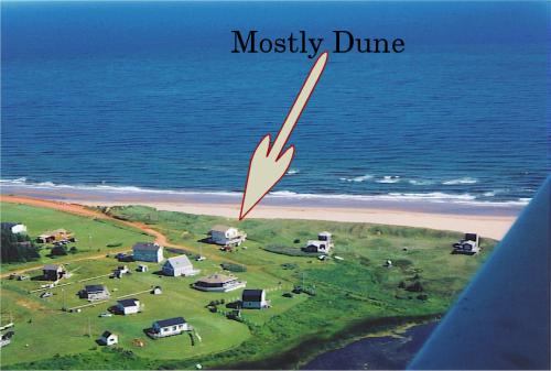 Mostly Dune at Thunder Cove, aerial view